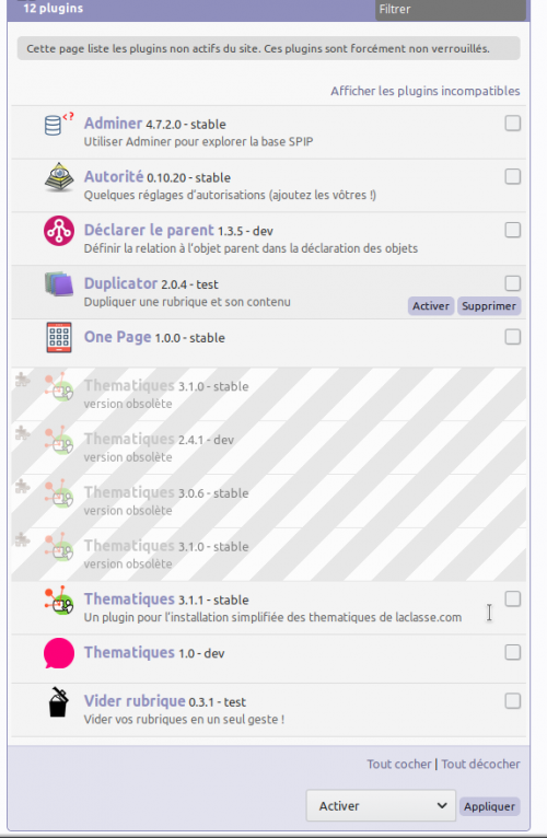 spip_installation_06_activer_module_thematique.png